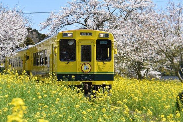 žlutý vlak projíždějící krajinou